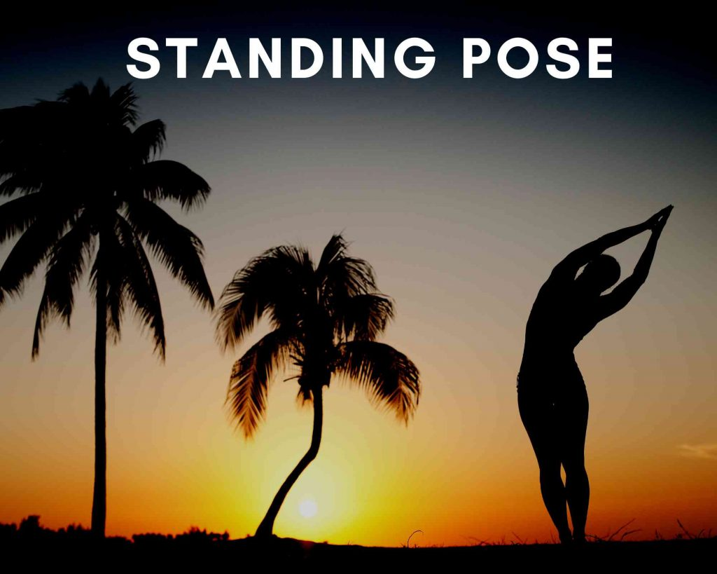 beginning poses for yoga